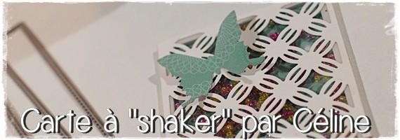 shaker_box (6)bandeau