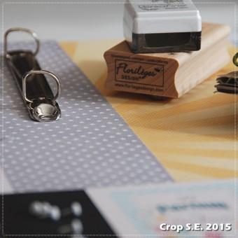 Crop_SE_2015 (49)carre