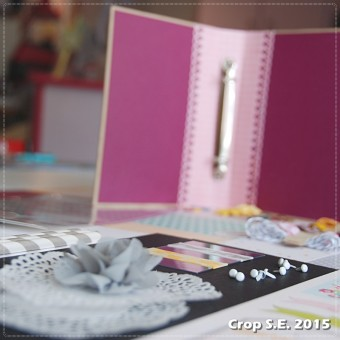 Crop_SE_2015 (50)carre