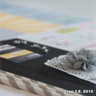 Crop_SE_2015 (7)carre