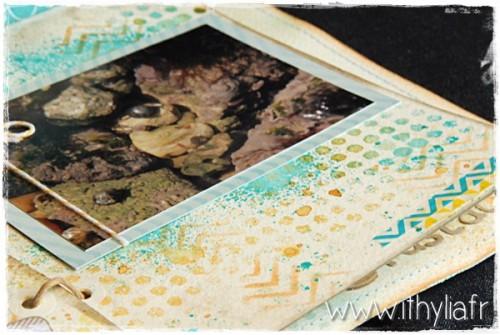 Album Coquillages Ithylia