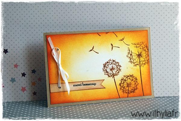 Carte merci orange