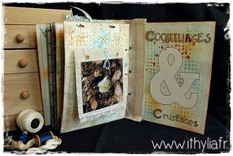 Album Coquillages Ithylia (30)